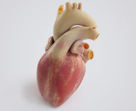 stampante 3d per organi stratasys j750